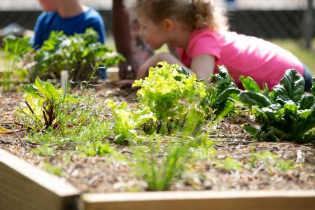 Children can have fun with gardening